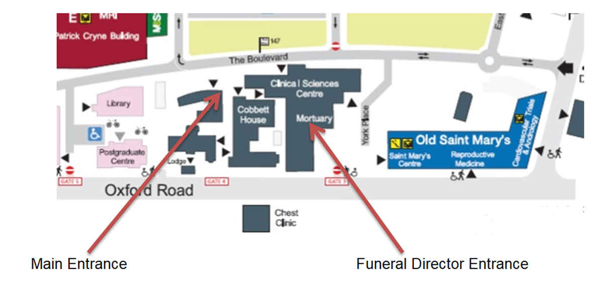 Adult mortuary location